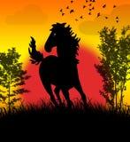 Caballo salvaje Stock de ilustración