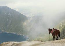Caballo sobre el lago Foto de archivo libre de regalías