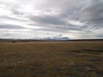 Caballo solitario en llano patagón imagen de archivo libre de regalías