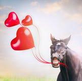 Caballo sonriente que sostiene tres globos rojos en la forma de corazones, día de fiesta Foto de archivo