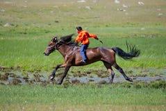 A caballo a través de la estepa Imágenes de archivo libres de regalías