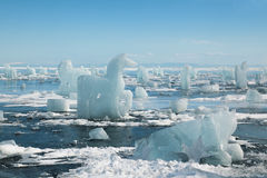 Caballo, una escultura del hielo Foto de archivo