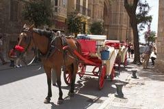 Caballo y carro 1 Imágenes de archivo libres de regalías