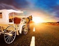 Caballo y carro clásico del cuento de hadas en perspectiv de la carretera de asfalto Imagenes de archivo