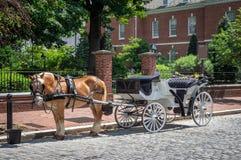 Caballo y carro en la ciudad foto de archivo libre de regalías