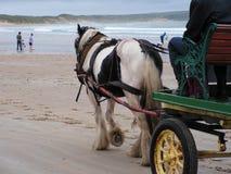 Caballo y carro en la playa. Fotos de archivo libres de regalías