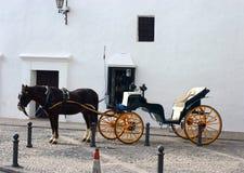 Caballo y carro en Ronda Imagen de archivo libre de regalías