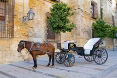 Caballo y carro tradicionales Fotos de archivo