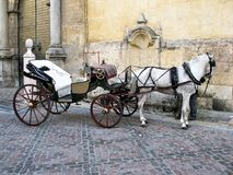 Caballo y carro tradicionales en Córdoba, España Imagen de archivo libre de regalías