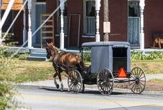 Caballo y cochecillo de Amish en Sunny Summer Day 2 fotos de archivo