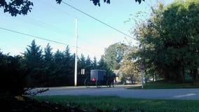 Caballo y cochecillo de Amish que van abajo del camino