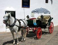 Caballo y cochecillo en España Imagen de archivo libre de regalías