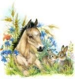 Caballo y conejito Fondo con la flor acuarela del ejemplo Foto de archivo libre de regalías