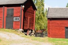 Caballo y granero Imagen de archivo libre de regalías