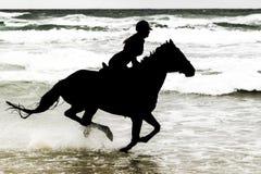Caballo y jinete de la silueta en la playa Imagen de archivo libre de regalías