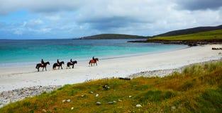 Caballo y jinetes en la playa Imagen de archivo libre de regalías