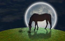 Caballo y Luna Llena libre illustration