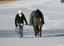 Caballo y mujer en nieve foto de archivo libre de regalías