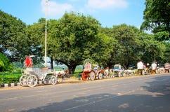 Caballos aprovechados al carro en Kolkata Imágenes de archivo libres de regalías