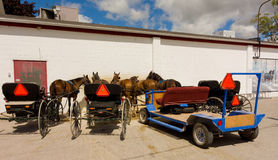 caballos aprovechados usados para tirar de los carros de Amish fotografía de archivo libre de regalías