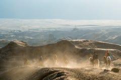Caballos de montar a caballo de los turistas encima del desierto en Bromo Tengger Semeru nacional Imagenes de archivo