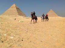 Caballos de montar a caballo de los turistas más allá de las pirámides fuera de El Cairo, Egipto en enero de 2014 Foto de archivo