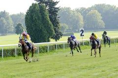 Caballos de raza en la pista de Partynice Foto de archivo