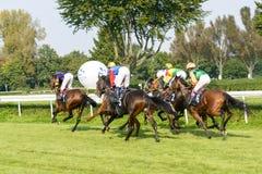 Caballos de raza en la pista de Partynice Imagen de archivo libre de regalías