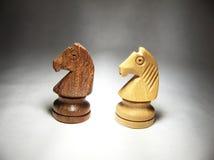 Caballos del ajedrez Fotografía de archivo
