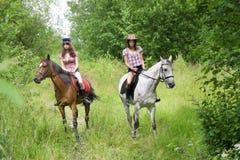 Caballos del paseo de las muchachas en el parque Fotografía de archivo libre de regalías