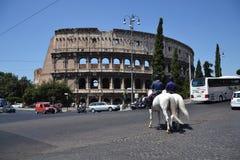 Caballos delante de inclinar Colosseum Foto de archivo libre de regalías