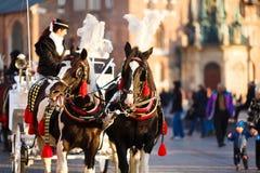 Caballos en Kraków Imágenes de archivo libres de regalías