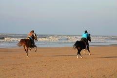Caballos en la playa Fotos de archivo