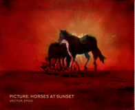 Caballos en la puesta del sol, pintura al óleo en la seda en vector Foto de archivo libre de regalías