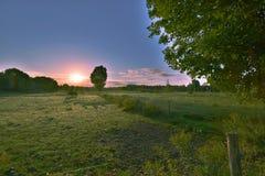 Caballos en salida del sol Foto de archivo libre de regalías