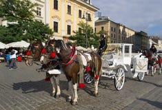 Caballos que tiran del carro en la ciudad vieja de Kraków Imagenes de archivo