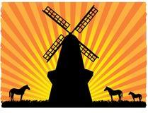 Caballos silueteados en campo al lado del molino de viento Fotografía de archivo libre de regalías
