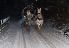 Caballos y carro Fotografía de archivo libre de regalías