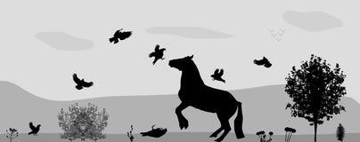 Caballos y pájaros de la lucha en naturaleza Vector Fotos de archivo