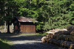 Caban и тимберс в древесинах Стоковое Фото