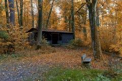 Cabana abandonada na floresta do outono Foto de Stock