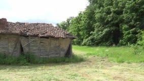 Cabana abandonada velha no prado ao lado da floresta filme