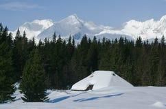 Cabana alpina Fotografia de Stock