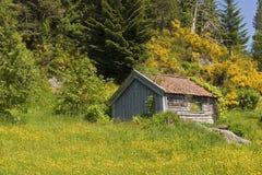 Cabana da montanha Foto de Stock