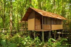 Cabana da selva imagens de stock