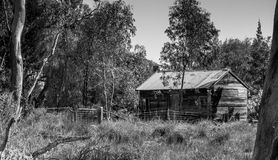 Cabana de Bush Fotos de Stock Royalty Free