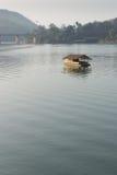 Cabana de flutuação no rio Imagens de Stock