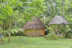 Cabana de madeira da selva fotos de stock