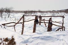 A cabana do caçador furtivo, mar de costa norte de Okhotsk, Kolyma, Extremo Oriente fotografia de stock