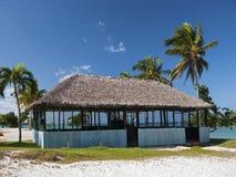 Cabana do Cararibe com palmas Fotografia de Stock